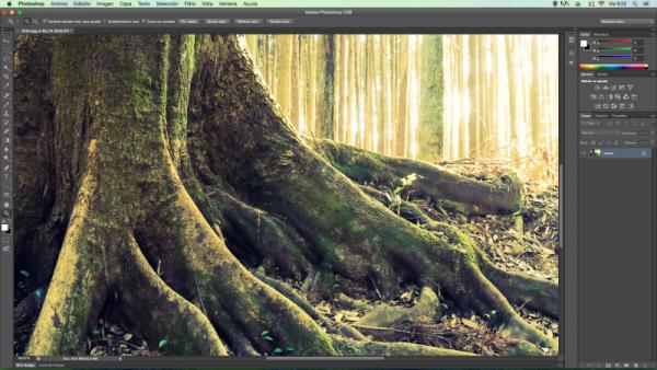 Cambiar el tamaño de una imagen con Photoshop: conceptos básicos