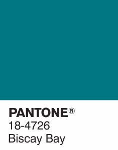 pantone 6