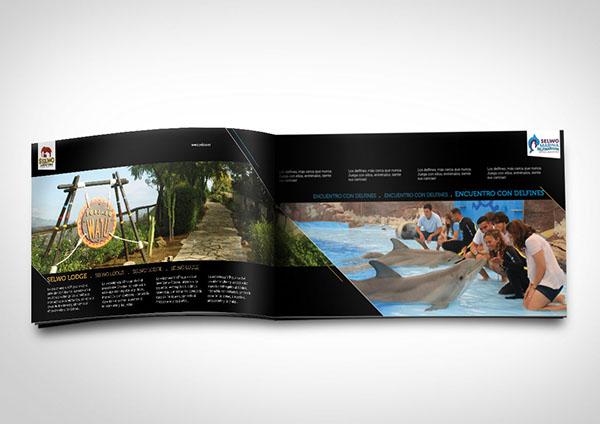 folleto publicitario 1