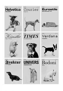 perros tipografia 210x300