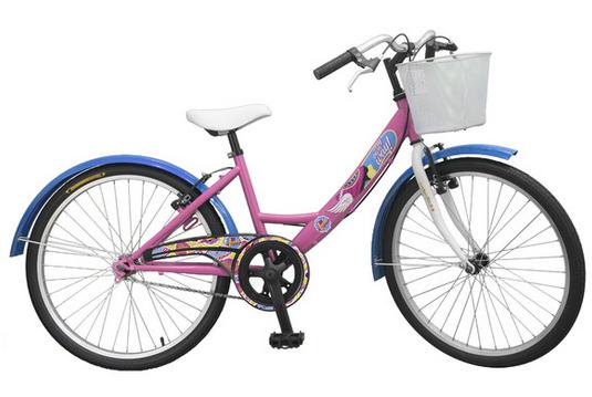 bicicleta comunion